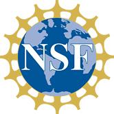 nsf41
